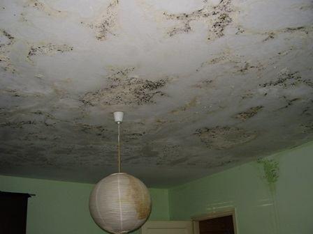 Prokišnjavanje krova